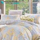 LUST生活寢具【奧地利天絲-格蕾】100%天絲、雙人5尺床包/枕套/舖棉被套組  TENCEL 萊賽爾纖維