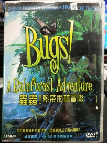 挖寶二手片-P06-309-正版DVD-其他【蟲蟲:熱帶雨林冒險】-(直購價)