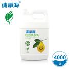 清淨海 環保洗手乳(檸檬飄香) 4000g SM-LMP-HW4000
