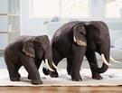手工雕刻柚木大象擺件/禮品饋贈首選東南亞風格精品
