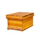 煮蠟蜜蜂蜂箱全套養蜂工具專用烘干杉木中蜂標準十框蜂巢平箱包郵 小山好物
