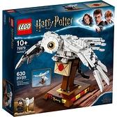 LEGO 樂高  75979 Hedwig