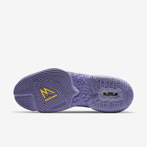 Nike Ambassador Xiii [CQ9329-500] 男鞋 籃球鞋 運動 休閒 避震 包覆 透氣 紫 黃
