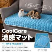 『現貨』【XL款】冰絲降溫涼感面料 涼感寵物墊 寵物散熱墊 寵物涼墊 降溫寵物窩 寵物【BE465】