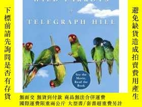 二手書博民逛書店The罕見Wild Parrots of Telegraph HillY407007 Mark Bittner