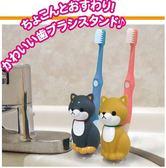 日本進口~立體豆柴/貓咪 吸盤牙刷架 (共5款)