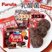 日本 Furuta 古田 乳酸菌餅乾 140g 巧克力餅乾 乳酸菌 餅乾 10億乳酸菌餅乾 日本餅乾