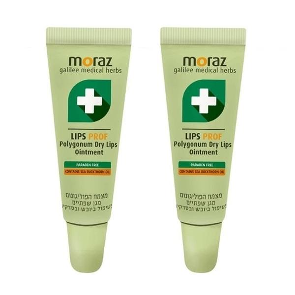 【南紡購物中心】Moraz茉娜姿 修護唇膏(升級版)10ml 二入組