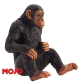 【Mojo Fun 動物星球頻道 獨家授權】 黑猩猩 387265