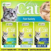*KING WANG*加量不加價【36包免運組】澳洲Select《你的貓Yourcat餐包 》100g/魚肉補貨中