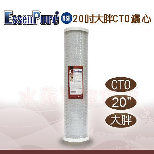 水蘋果【快速到貨~刷卡含稅】EssenPure高品質20英吋大胖CTO濾心[A2PC1]