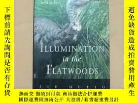 二手書博民逛書店ILLUMINATION罕見IN THE FLATWOODS:S