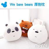 Norns【We bare bears 10吋厚抱枕】CN正版 熊熊遇見你 靠墊娃娃 絨毛玩偶 三隻熊 北極熊 熊貓 卡通頻道