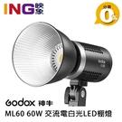 【24期0利率】Godox 神牛 LED ML60 開年公司貨 60W 交流電白光LED棚燈 小卡口 攝影燈 持續燈 補光燈