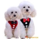 買一送一狗狗牽引繩西裝狗鏈狗繩晚禮服胸背帶【小獅子】