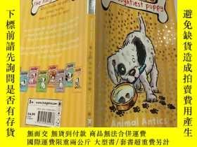 二手書博民逛書店puddle罕見the naughtiest puppy 最頑皮的小狗Y200392