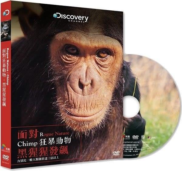面對狂暴動物 黑猩猩發飆 DVD(購潮8)