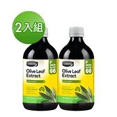 Comvita康維他 橄欖葉精華萃取液(薄荷味)500ml - 2入組