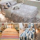 【鋪棉床包】QPM1雙人加大鋪棉床包三件組 100%精梳棉 多款任選 台灣製 棉床本舖