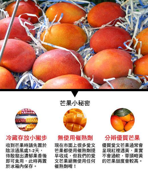 預購-風之果 枋山寶島級香甜40年老欉愛文芒果禮盒5台斤(9顆)