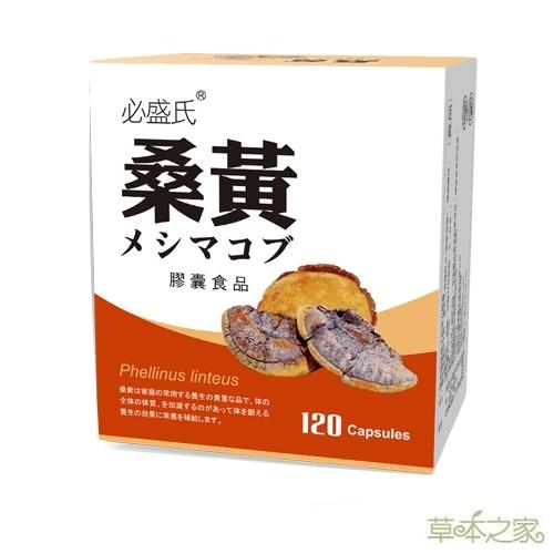 草本之家-桑黃菇子實體120粒