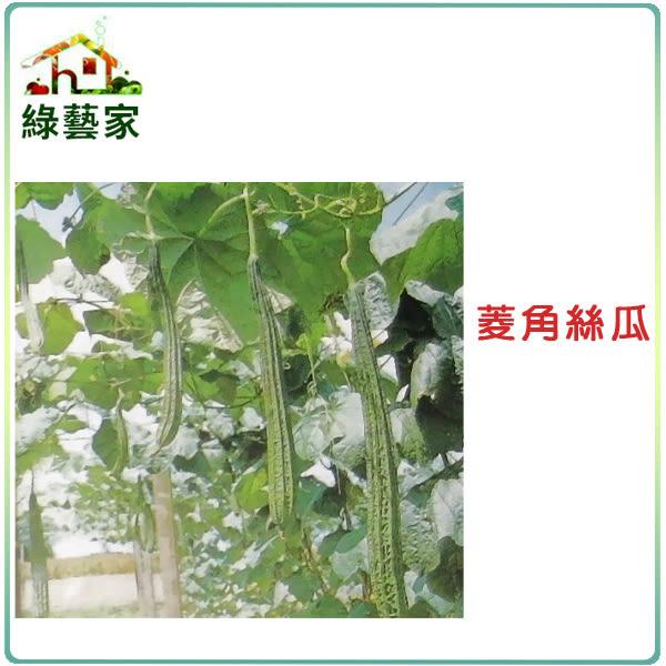 【綠藝家】大包裝G28.菱角絲瓜(綠菱,澎湖絲瓜)種子80顆