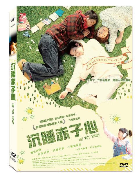 沉睡赤子心 DVD  (購潮8)