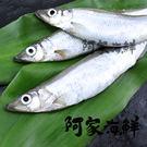 特選大柳葉魚(帶卵)(300g±5%/包...