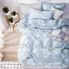 Artis - 100%純棉-清新E系列-【星小兔】加大床包/枕套三件組