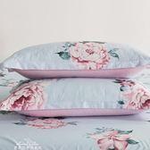 枕套一對48x74cm100%簡約成人枕頭套單人枕芯套『夢娜麗莎精品館』