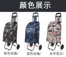 兩輪購物車買菜車小拉車可折疊拉桿車行李車...