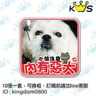 【客製寵物貼】內有惡犬  # 壁貼 防水貼紙 汽機車貼紙 10cm x 9.7cm-- 十張一套,可換框。