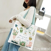 環保袋ins小清新帆布包女日系文藝環保袋學生手提夏款仙女漂亮的側背包 新品【99免運】