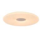 5cm超薄設計,獨立夜燈,可使用米家APP智能控制,WIFI聯網,絕佳演色性,壁切可變色溫