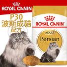 【培菓平價寵物網】FBN 新皇家飼料《波斯成貓P30配方》2KG