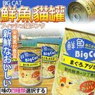 【ZOO寵物樂園】BigCAT鮮魚》大貓...