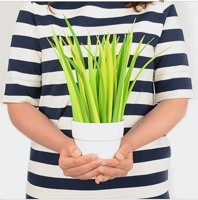 預購 - 草葉筆創意可愛文具禮品細0.5日韓圓珠筆