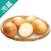 產銷履歷車城洋蔥(500g±5%)/袋【愛買冷藏】