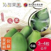 買就捐-沁甜果園SSN.頂級文旦小禮盒3-4粒裝/公斤(共6箱)﹍愛食網