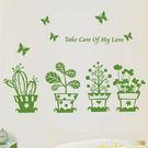 壁貼 綠色盆栽 創意壁貼 無痕壁貼 壁紙 牆貼 室內設計 裝潢【BF0868】 Loxin