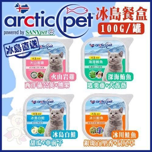 *King WANG* 【單盒】arcticpet 冰島餐盒/貓罐頭餐盒《4種口味可選》100g/盒