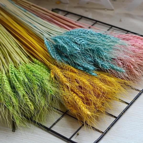 永生花花材,浮游花製作材料,彩色麥穗,小份單支