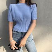 針織短袖  chic風針織短袖t恤女短款 學生修身顯瘦上衣 艾莎嚴選