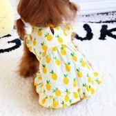 卡哇伊小菠蘿狗狗裙子夏公主蓬蓬裙泰迪貴賓犬寵物狗洋裝夏裝薄款【快速出貨】