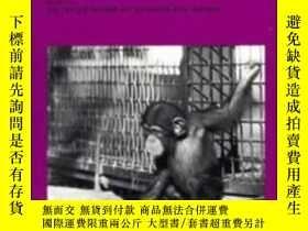二手書博民逛書店 language 罕見And Intelligence In Monkeys And ApesY255562