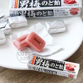 日本 NOBEL諾貝爾 男梅條糖 (10粒) 42g 男梅糖