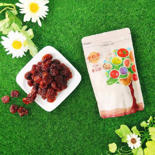 【愛盲庇護工場】台灣番茄乾~愛鮮果系列 (隨手獨享包100g)