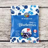加拿大藍莓顆粒果乾40g【0216零食團購】628055345169