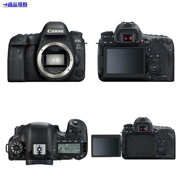 Canon EOS 6D Mark II 單機身*(中文平輸)~