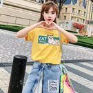 [618好康又一發]ins短袖t恤女20...